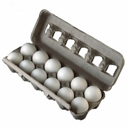 Dozen Eggs Coupon