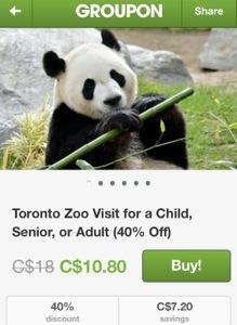 Toronto Zoo Discount Deal